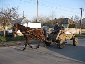 typical village scene