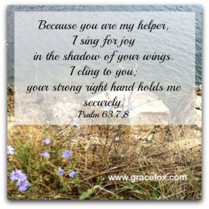 Psalm 63-7,8