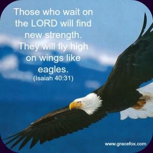 Isaiah 40-31 2