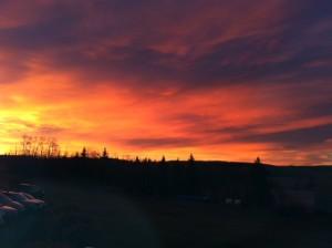Albert sunrise red4