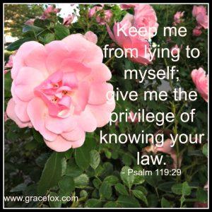 Psalm 119-29